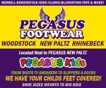 Pegasus Footwear